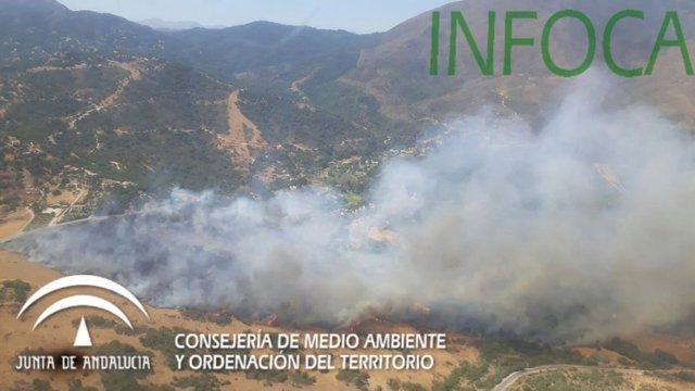 Incendio en el municipio malagueño de CAsares infoca fuego verano