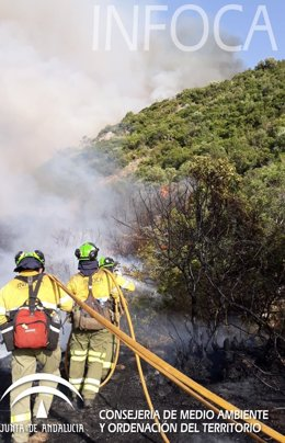 Bombero trabaja en incendio forestal en casares málaga  infoca