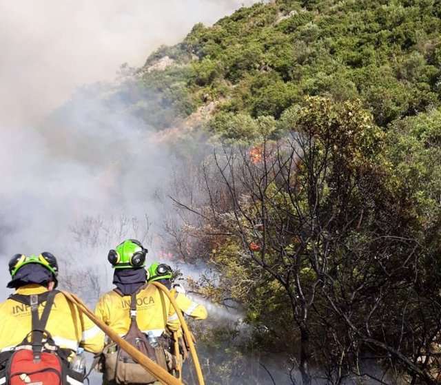 Incendio forestal en Casares (Málaga)
