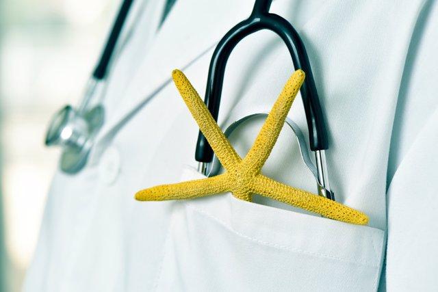 Médico en verano, estrella de mar, fonendoscopio
