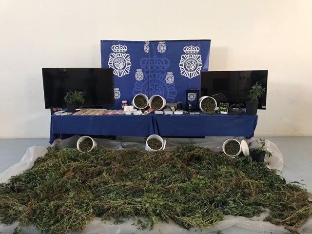 Marihuana y otros elementos intervenidos en la operación 'Lucas'