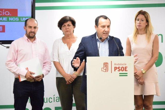 Jose Luis Ruiz Espejo (PSOE) en rueda de prensa
