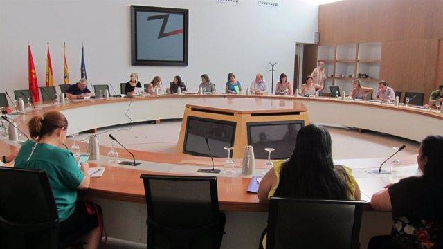 Reunión del Consejo de Ciudad para hablar del mercado ambulante