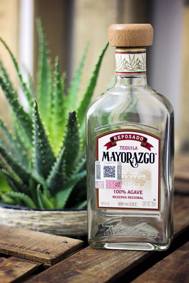 tequila-2429376_960_720