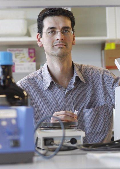 Un investigador del CIBEROBN recibe una beca Leonardo de la Fundación BBVA para investigar sobre la síntesis de glucosa