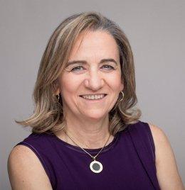 María José Alonso, catedrática de la Universidad de Santiago de Compostela
