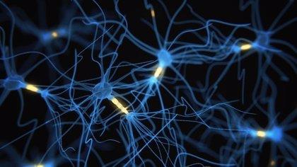Un estudio demuestra que la estimulación cerebral durante el sueño puede mejorar la memoria