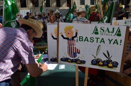 """Asaja-Sevilla exige a la CE que defienda la aceituna negra y pida en la reunión con Trump ayudas para """"paliar pérdidas"""""""