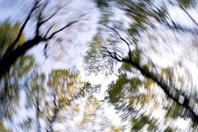 Mareo, árboles, bosque, vértigo