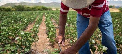 Los empleados de C&A recaudan más de un millón de euros para apoyar el desarrollo sostenible