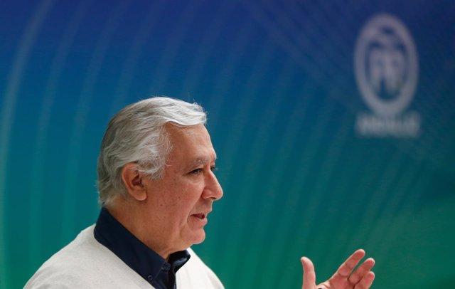 El vicesecretario del PP Javier Arenas