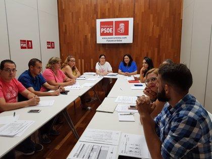 """PSOE de Córdoba valora que en """"sólo 50 días"""" el Gobierno ha comprometido un plan especial de empleo para Andalucía"""