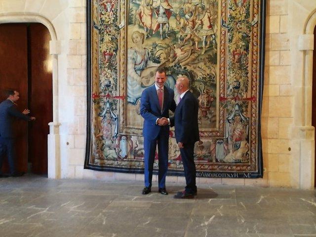 El Rey Felipe VI recibe al presidente del Consell de mallorca, Miquel Ensenyat