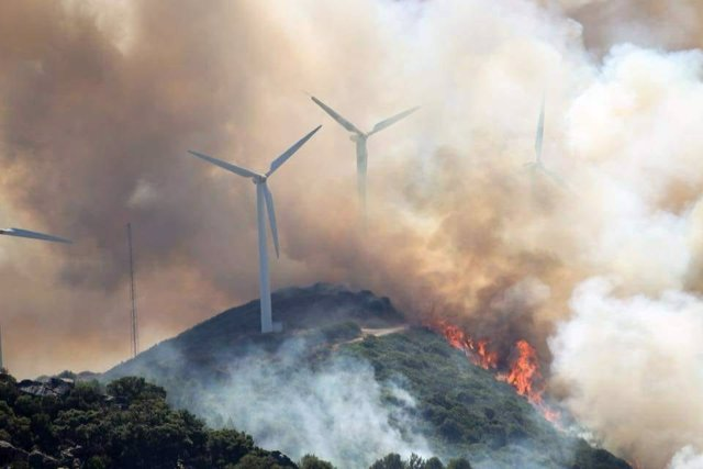Incendio forestal en Tarifa (Cádiz)