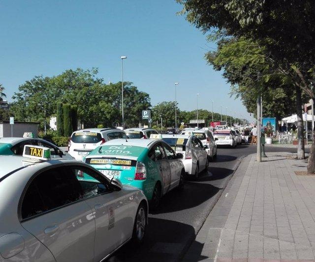 Marcha de taxis en Córdoba.
