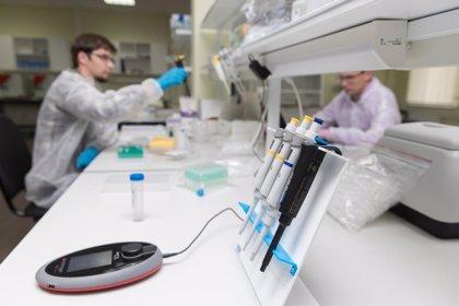 Nuevo paso hacia una vacuna contra el VIH: todos los tipos descienden de cualquier partícula del virus