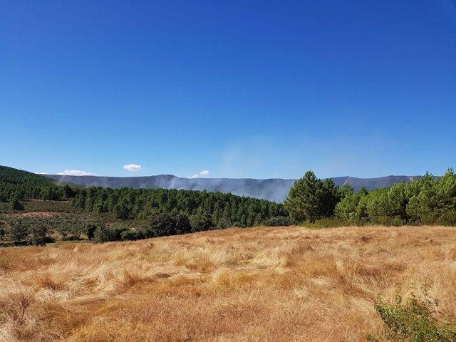 Incendio en Valverde del fresno