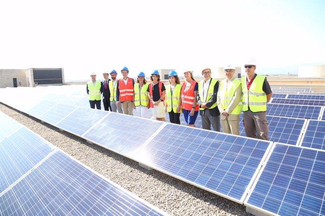 Armengol y Ribera (centro) en la instalación fotovoltaica de Son Llàtzer