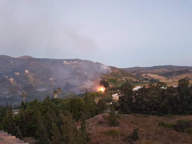 Incendio forestal declarado en Manilva (Málaga)