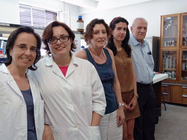 Investigadores españoles desvelan una proteína clave para el hígado