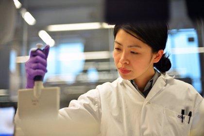 Usan nanopartículas magnéticas en el tratamiento de tumores espinales difíciles