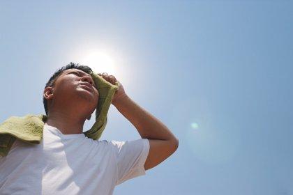 Los 6 consejos frente a los golpes de calor