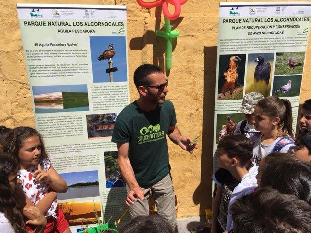 Campaña de actividades del Parque de Los Alcornocales