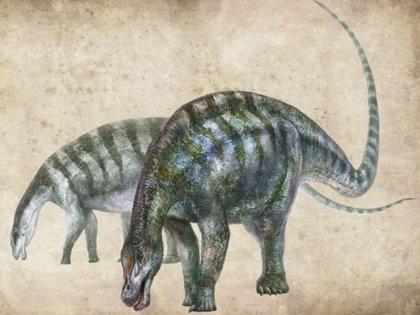 Un nuevo primo del Diplodocus aparece en un lugar y tiempo equivocados