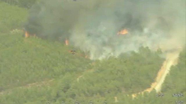 Incendio forestal en San Vicente de Alcántara