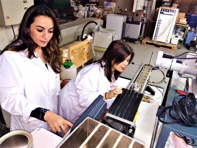Logran avances en la resistencia de biocompuestos del trigo.