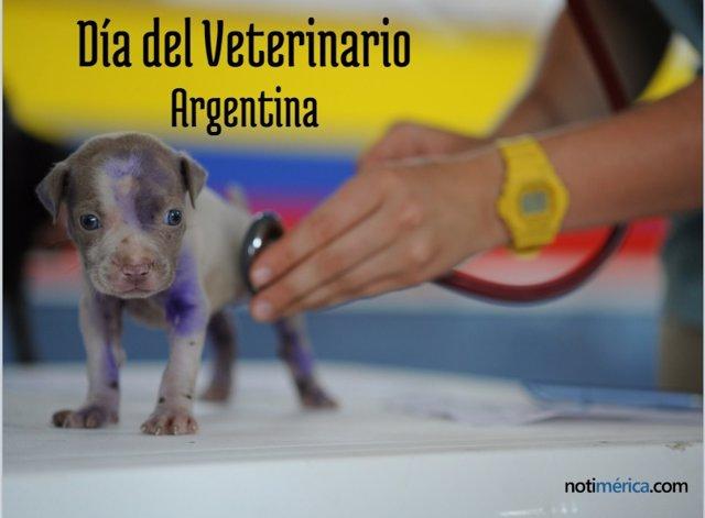 6 De Agosto, Día Del Veterinario En Argentina