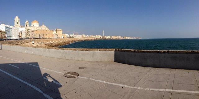 0ef40b6396 Ciudadanos critica el estado de playas de La Victoria y Santa María del  Mar, de las que recibe