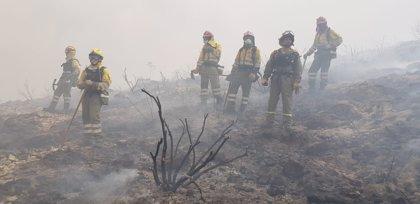 Efectivos de la Región trabajan en la extinción del incendio forestal de Llutxent (Valencia)