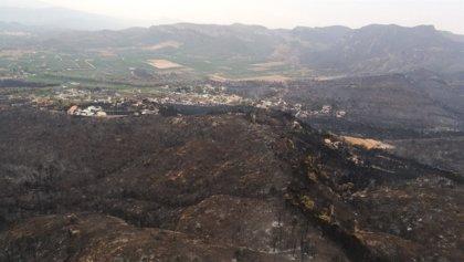 El incendio mantiene dos focos activos en Llutxent y Marxuquera, aunque por la noche no ha evolucionado a más