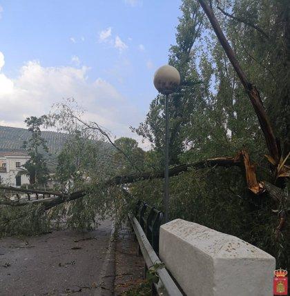Una tormenta causa daños por el viento en la provincia de Jaén