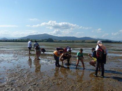 Cantabria urge el subfluvial de Santoña ante los vertidos que impiden marisquear
