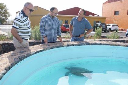 La Tahonilla atiende a más de 900 animales durante el primer semestre