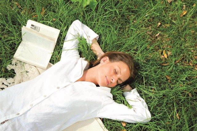 Alergia. Campo. Siesta. Descansar. Tumbarse. Dormir.