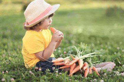 Aprovechar el verano para mejorar el consumo de frutas y hortalizas