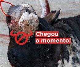 Cartel da campaña '#ChegouOMomento' contra a tauromaquia.