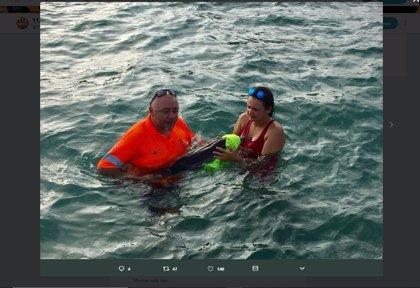 Rescatan una cría de delfín desorientada y en estado débil en una playa de La Manga
