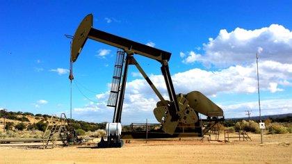 Las importaciones de crudo suben un 3,6% en el primer semestre, hasta más de 33 millones de toneladas
