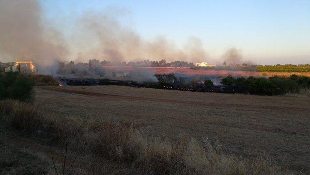 Un incendio en Lepe (Huelva).