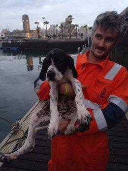 Tripulante de la Guardamar Talía con el perro que