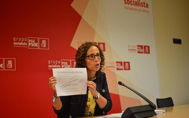 El PSdeG urge a Feijóo 'responsabilidades' por el 'caos' en Política Social, que supone 'un riesgo para los mayores'