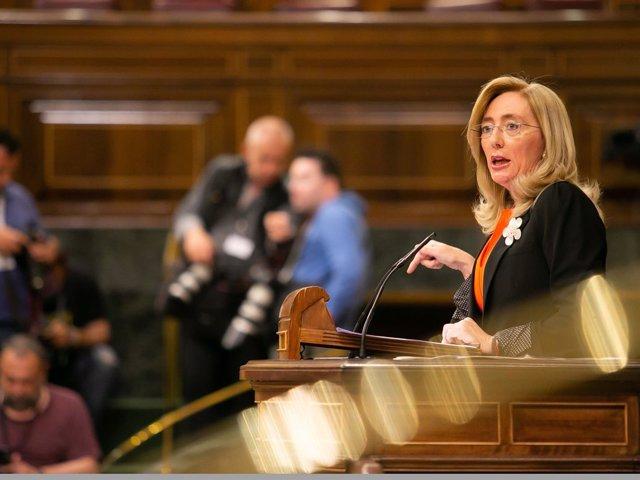 Carmen Dueñas, diputada del PP