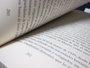 La rentrée literaria tendrá este otoño en castellano a Coelho, Welsh, Piglia, Roth y Nesbo