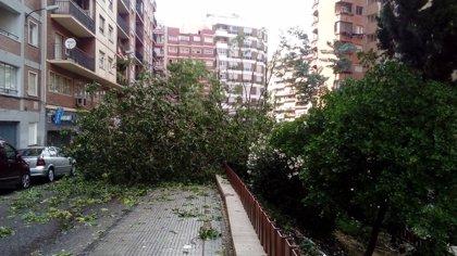 Los bomberos de Zaragoza tienen pendiente una docena de incidencias por la fuerte tormenta del domingo