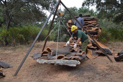 """COAG Andalucía exige montes con cultivos porque """"la acción de los ganaderos es fundamental para prevenir incendios"""""""