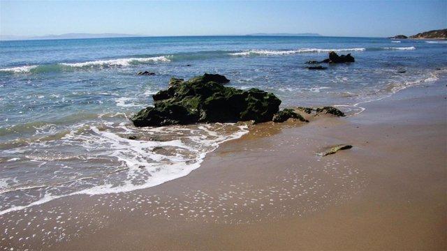 Playa de Valdevaqueros en Tarifa